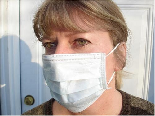 50 Pc Salon Style Dust Face Mask Ear Loop Bird Swine-Flu Cleaning Masks NIB